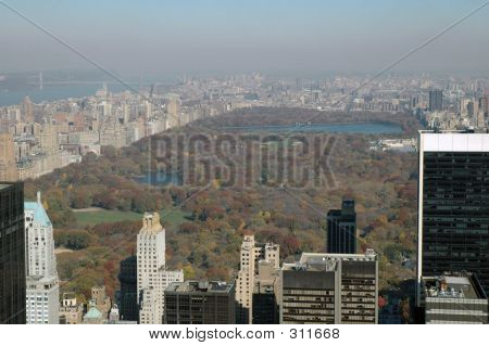 Ny's Central Park