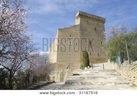 castle of Chateauneuf du Pape France