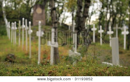 Navvy cemetery in autumn color.