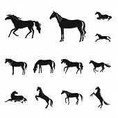 Vector Illustration Of Fauna And Mare Sign. Collection Of Fauna And Stallion Vector Icon For Stock. poster
