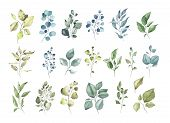 Collection Of Watercolor Tropical Greenery Floral Leaf Plant Forest Herbs Leaves Spring Flora Isolat poster