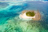 Small Island Paradise On Coral Reef, Top View. Guyam Island, Siargao, Philippines. Tropical Island W poster