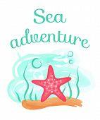 Sea Adventure Vector, Pink Seastar Living Underwater. Creature Sea Dweller, Aquatic Creature On Sand poster