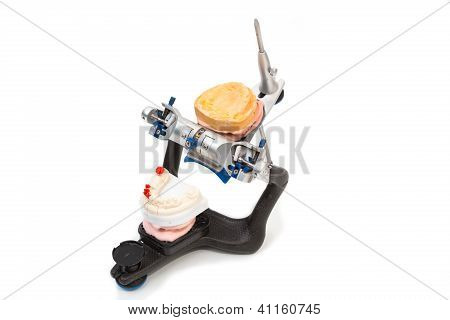 Articulator With Mold