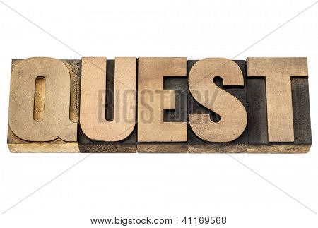 busca - texto isolado em blocos de impressão tipografia vintage tipo madeira