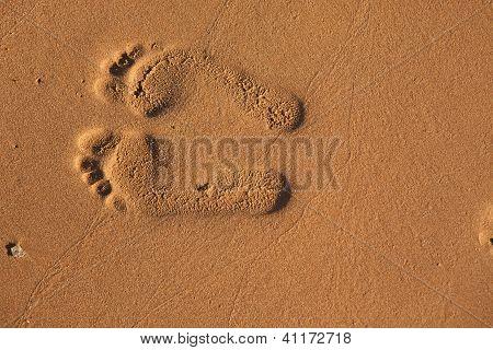 Imprints Of Footsteps