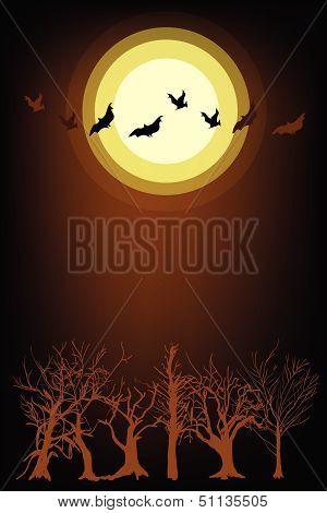 Dark Forest In Full Moon Night Background