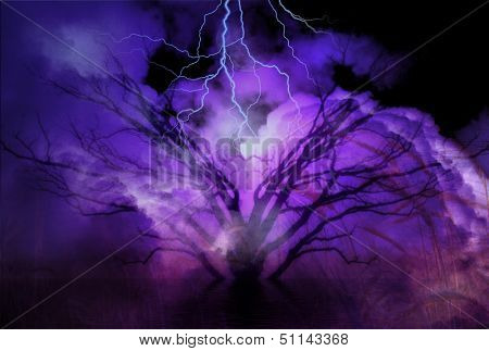 Tree and Storm landscape