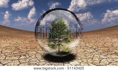 Tree inside glass bubble in desert