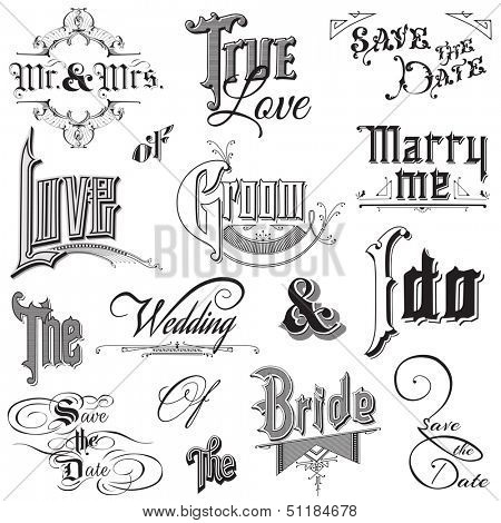 Calligraphic Wedding Elements - for design and scrapbook - in vector
