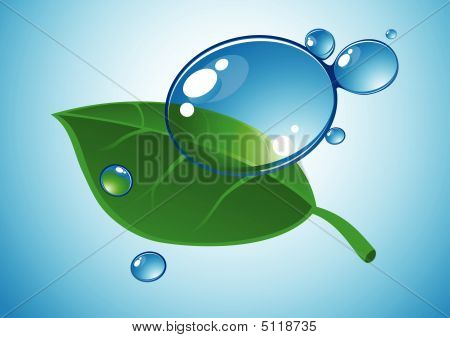 Water Drop And Leaf.eps