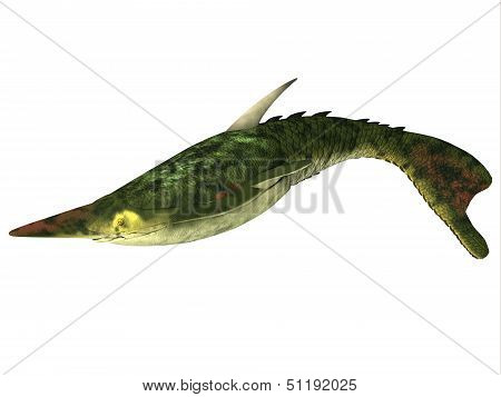 Pteraspis Fish On White