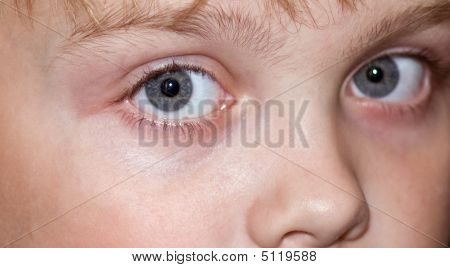 Child's Eyes Macro