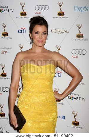 LOS ANGELES - SEP 20:  Bellamy Young at the Emmys Performers Nominee Reception at  Pacific Design Center on September 20, 2013 in West Hollywood, CA
