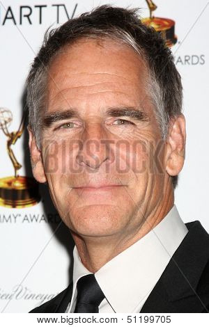 LOS ANGELES - SEP 20:  Scott Bakula at the Emmys Performers Nominee Reception at  Pacific Design Center on September 20, 2013 in West Hollywood, CA