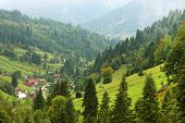 stock photo of hayfield  - Rural landscape in Maramures - JPG