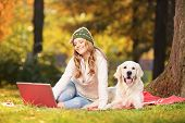 foto of working-dogs  - Young female in a park with her labrador retriever dog working on a laptop - JPG