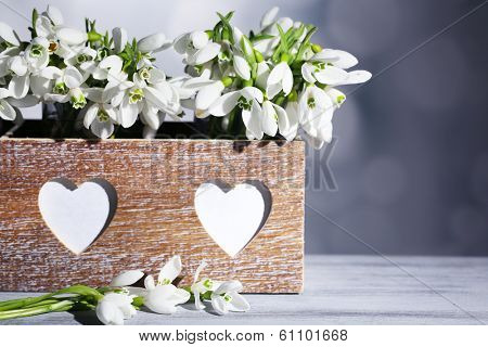 Beautiful snowdrops in wooden crate on grey background