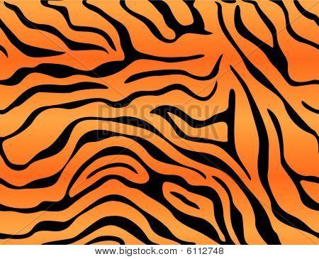 Tiger Background.eps