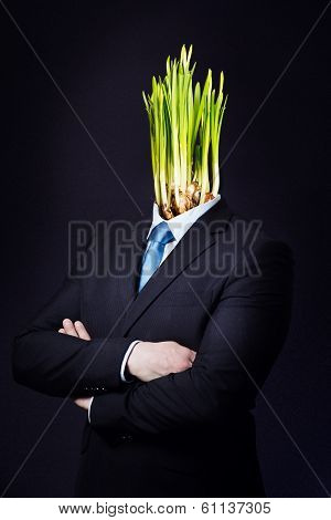 Business Man with Green Daffodil Head