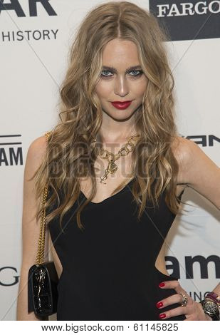 NEW YORK-FEB 5: Actress Katharina Damm attends the 2014 amfAR New York Gala at Cipriani Wall Street on February 5, 2014 in New York City.