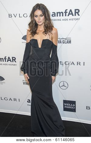 NEW YORK-FEB 5: Model Nicole Trunfio attends the 2014 amfAR New York Gala at Cipriani Wall Street on February 5, 2014 in New York City.