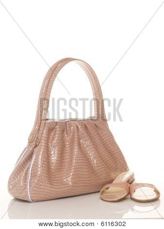 Luxury pink female bag and shoes