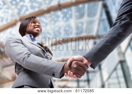 Business people shaking their hands to seal a deal
