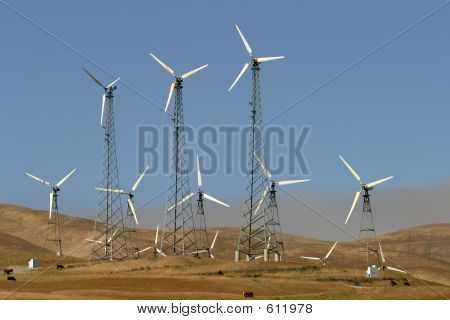 Wind Generators, Cows, And Pollution