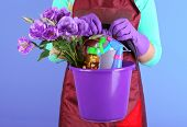 Housewife holding bucket with cleaning equipment on color background. Conceptual photo of spring cle