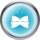 Butterfly Icon On Internet Button Original Illustration