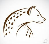stock photo of hyenas  - Vector image of a hyena on white background - JPG