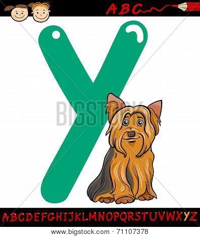 Letter Y For Yorkshire Terrier Dog
