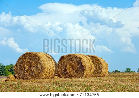 Mown Field With Bales Of Straw