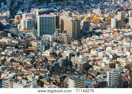 Aerial Tokyo Cityscape from Shinjuku