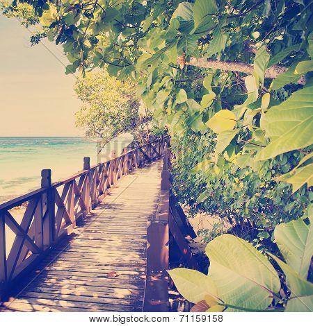 Tropical Walkway Instagram Style