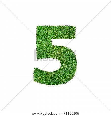 A Grass Five 5 Isolated On A White Background