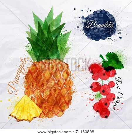 Fruit watercolor pineapple, bramble, red currant