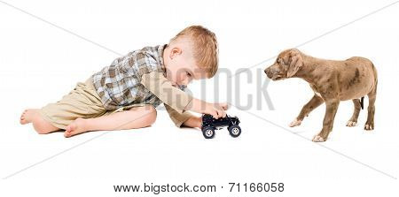 Boy and puppy pitbull play together toy car