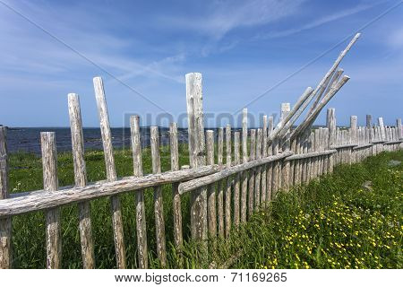 wood branch fence, Newfoundland