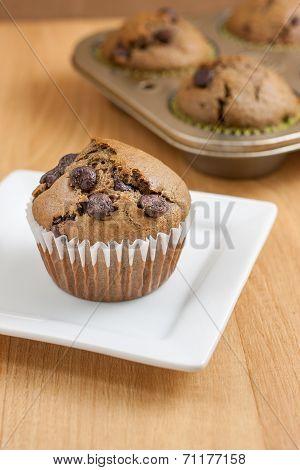 Chocolate Chocolate Chip Muffins