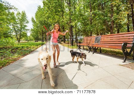 Teenage girl with running away dogs