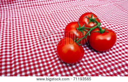 Red Vine tomatoes against red and white chequered cloth