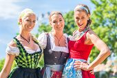 stock photo of national costume  - Women friends visiting Bavarian fair in national costume or Dirndl  - JPG