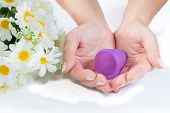 picture of tampon  - Studio shot of woman hands holding a menstrual cup and some flowers isolated on white background - JPG