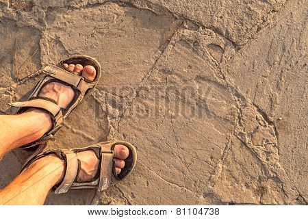man feet on beach sand