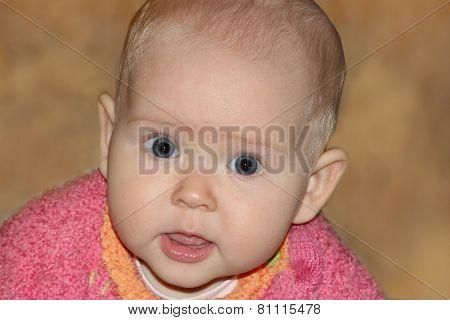 Little Baby Looking Forward