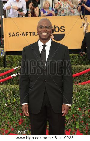 LOS ANGELES - JAN 25:  Andre Braugher at the 2015 Screen Actor Guild Awards at the Shrine Auditorium on January 25, 2015 in Los Angeles, CA