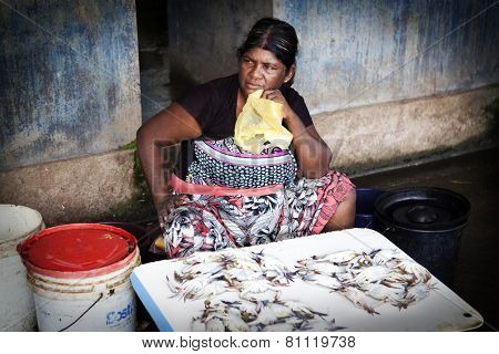 COLOMBO, SRI LANKA - DECEMBER 31: Unidentified sellers at the early morning fish markets of Negombo, near Colombo, Sri Lanka on the 31 December, 2014.