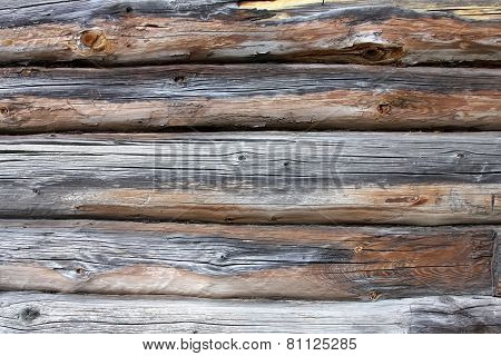 piece a wall in old house made of logs. Wood texture is seen distinctly
